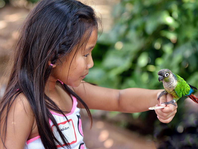 Madison had a gentle touch with the birds