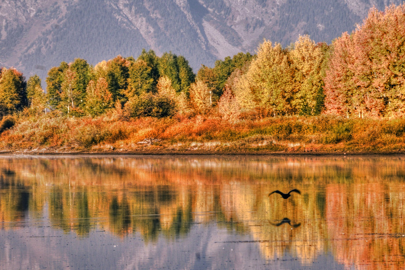 The colors of Oxbow Bend