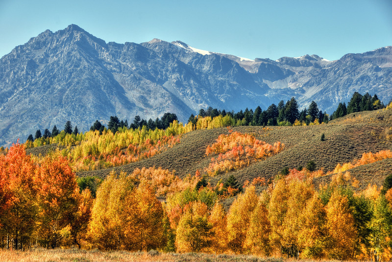 Fall color at Oxbow Bend