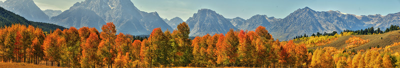 Panorama of fall color at Oxbow Bend