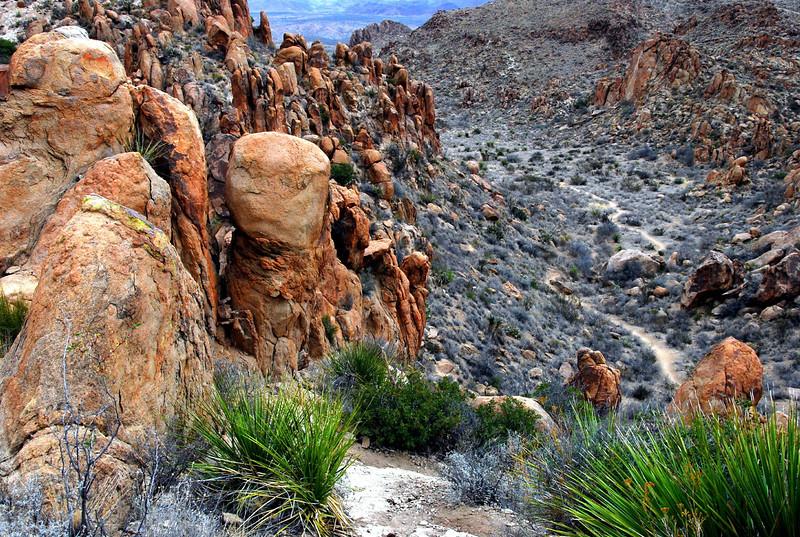Grapevine Hills trail2