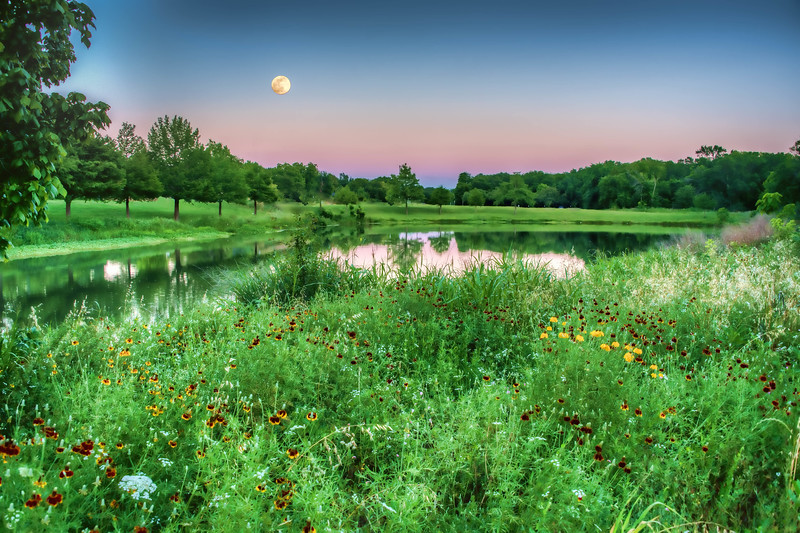 Blue moon over Duck Creek Pond