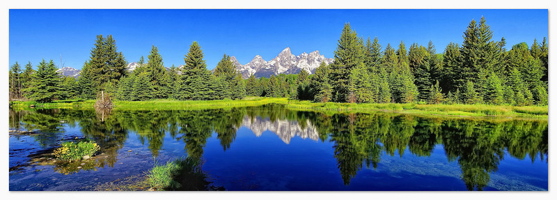 Beaver Pond at Lower Schwabacher Landing
