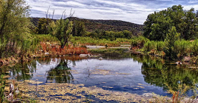 Spring Fed Pond - Texas Hill Country