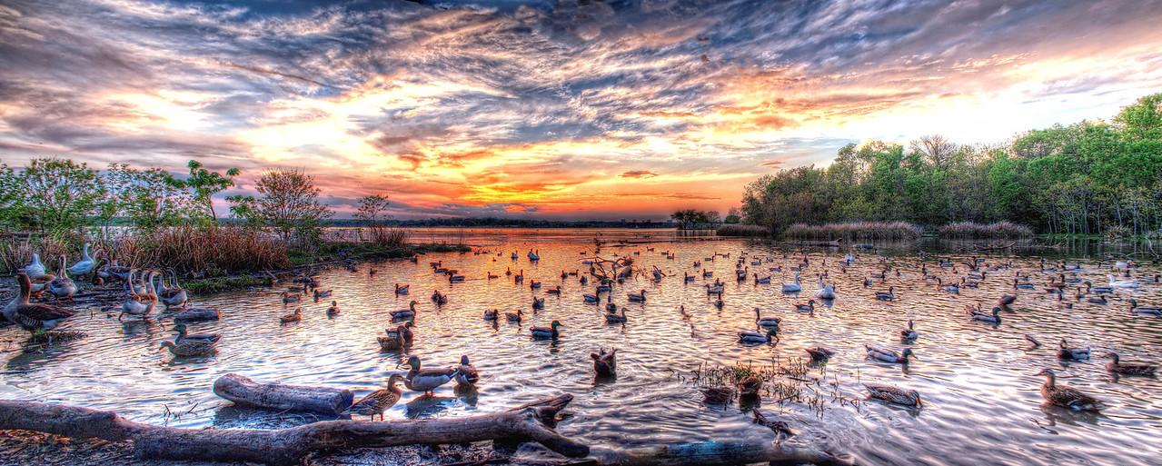 Spring sunset at White Rock Lake