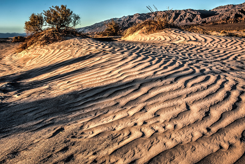 Late afternoon at the East Side Sand Dunes
