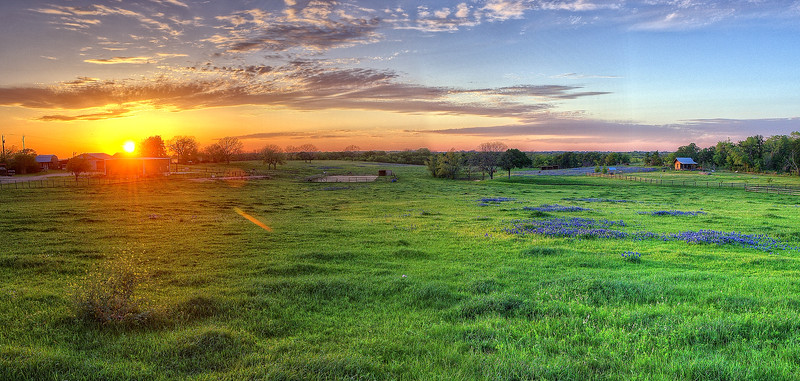 Sunset on the bluebonnet prairie