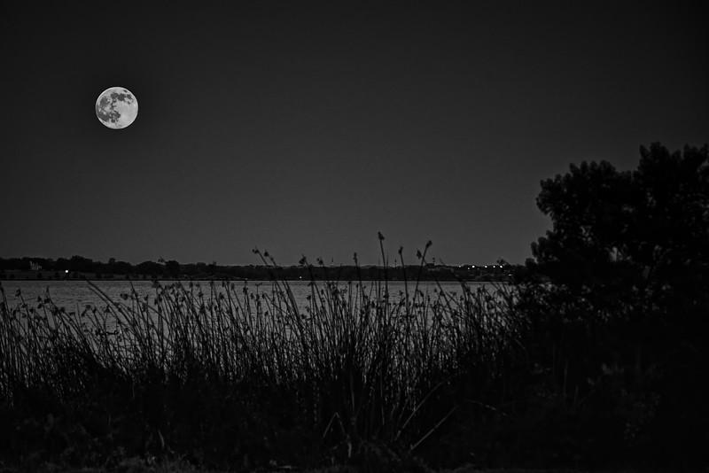 Buck Moon over White Rock Lake