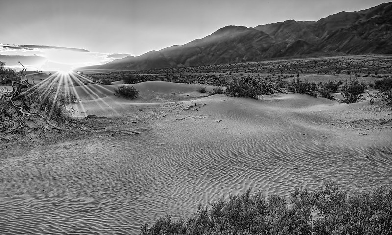 Sun rising on the Mesquite Sand Dunes (monochrome)