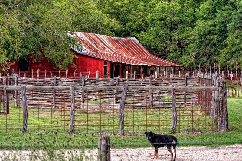Hill Country landscape