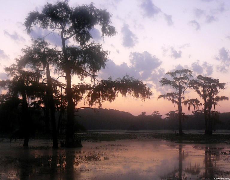 Dawn on Caddo Lake, Texas