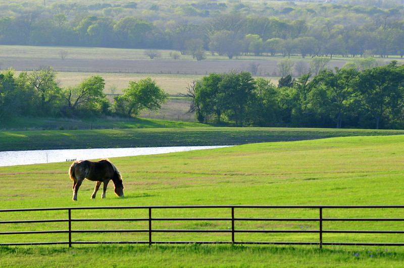 Pastoral scene on Sugar Ridge Road