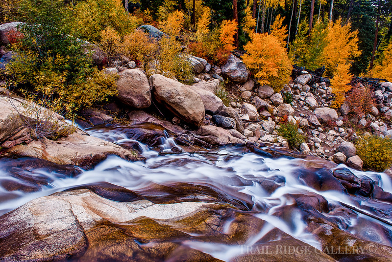 Autumn Alluvial