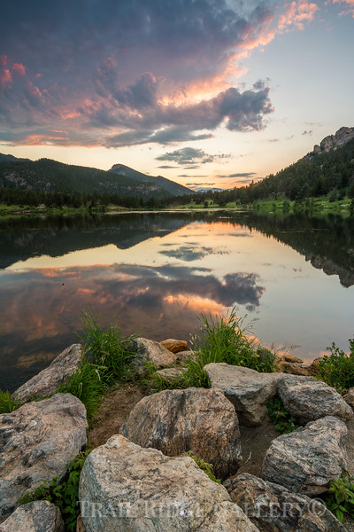 Lily Lake July