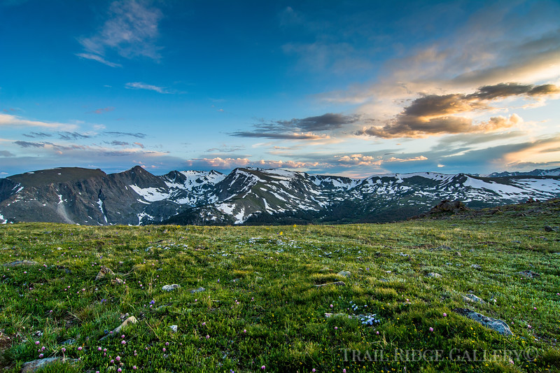 Late Summer Splendor At 12,000 feet