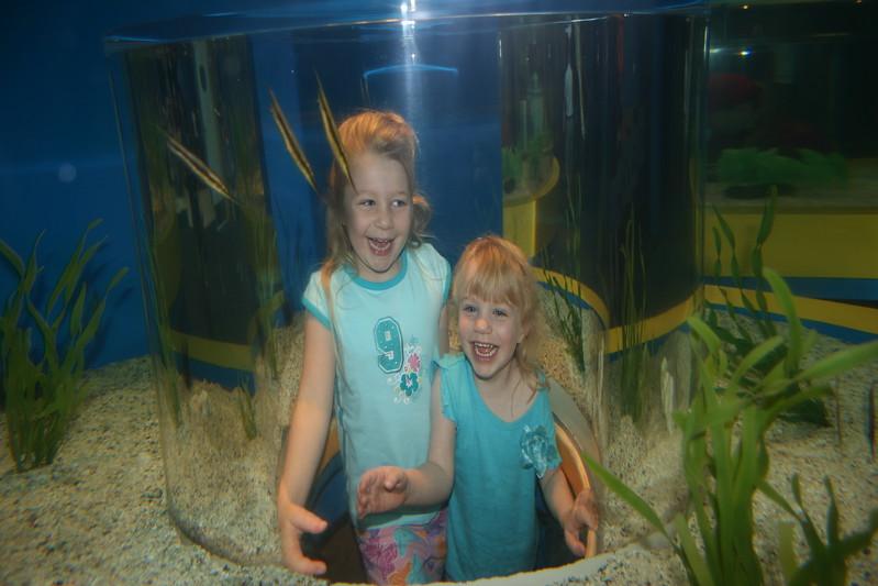 Vacation/Smoky Mountains - Ripleys Aquarium