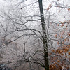Weather/2007-1-13 Ice Storm
