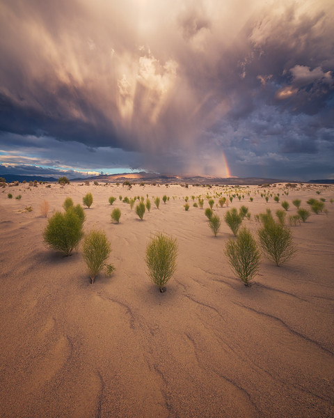 Death Valley Photography