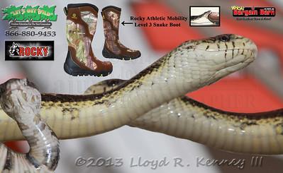 Snake Master Show