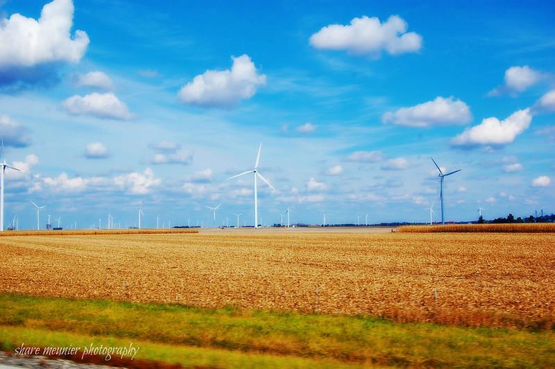 windy acres