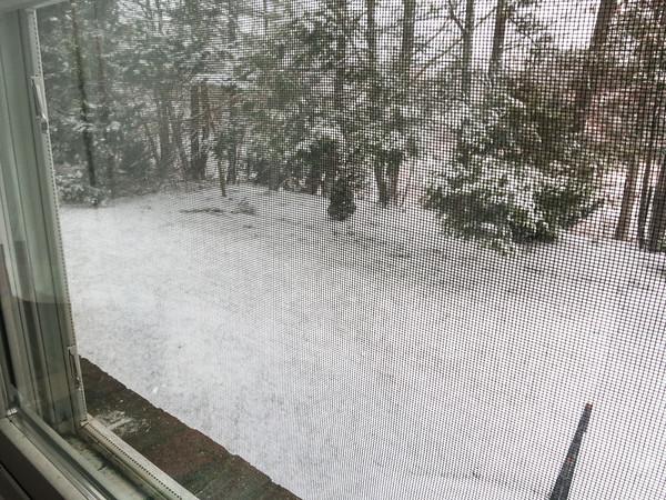 Blizzardocalypse