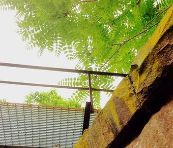 Above The Rail Bridge