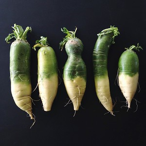 Green Daikons