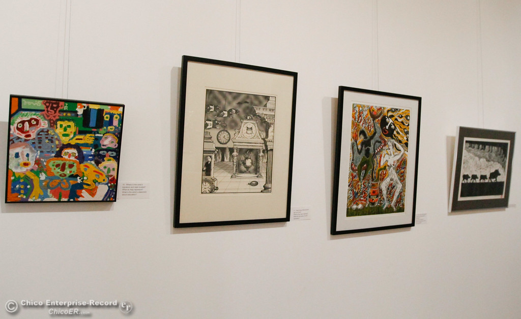 . Artwork in the A Sense of Place gallery at the new Museum of Northern California Art Wednesday July 26, 2017 in Chico, California. (Emily Bertolino -- Enterprise-Record)