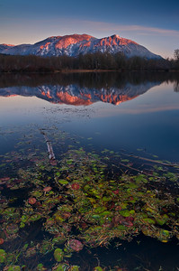 Mount Si Alpenglow