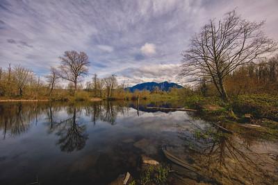Borst Lake Early Spring Reflection