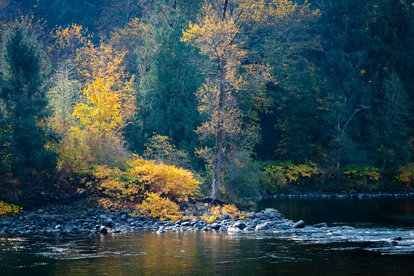 Fall on the Snoqualmie River