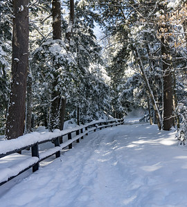 Snowy Path Tahquamenon Falls, Michigan