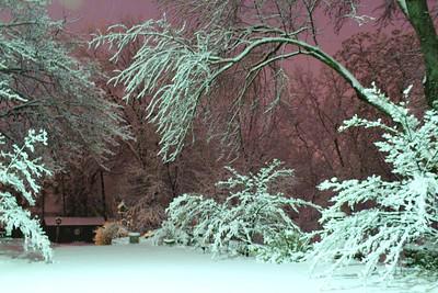 Snowy Night fall in Michigan