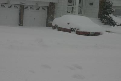 Snow  2005-01-23