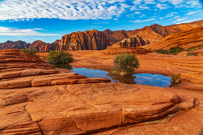 Seasonal Pond in the Sandstone of Snow Canyon State Park