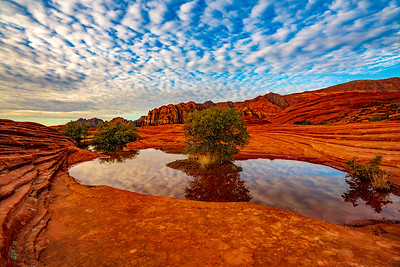 Clouds Reflected in Seasonal Pond in Snow Canyon State Park