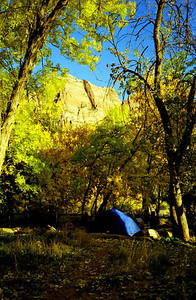 39 Camping at Zion NP