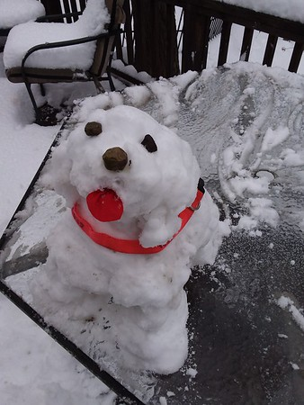 Snow dog<br /> Submitted by Linda Wiedman of Effingham