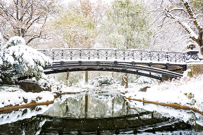 Foot Bridge over Benton Park Lake