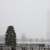 Snow, Washington DC, January 21, 2014<br /> National Christmas Tree, Washington Monument