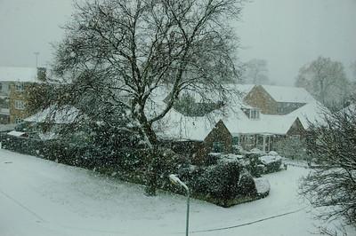 Snow - Dec 2010 (6)