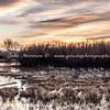Sandhills at sunrise