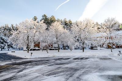 Snow Neighborhood