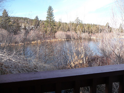 The Deschutes river is so beautiful... Lots of geese and ducks to watch.