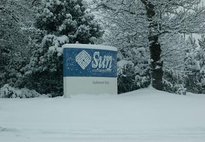 Snow on 2 Feb 2009 (38)