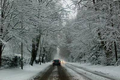 Snow on 2 Feb 2009 (24)