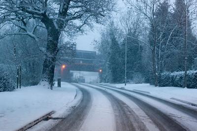 Snow on 2 Feb 2009 (8)