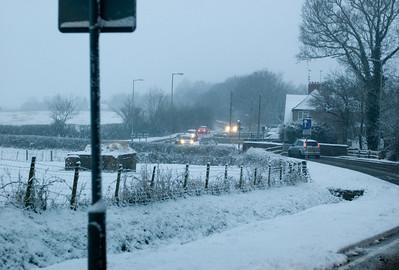 Snow on 2 Feb 2009 (12)