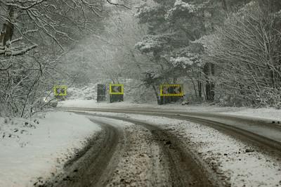 Snow on 2 Feb 2009 (27)
