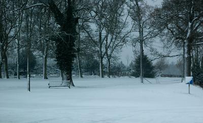 Snow on 2 Feb 2009 (19)